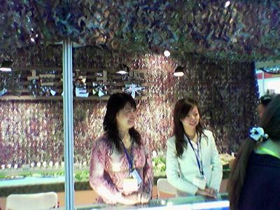 2005.10.24 Shenzhen salon, Stand avec filet U. S. Woodlands 2.jpg